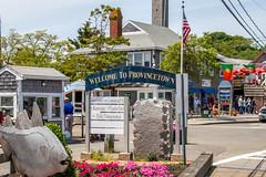 IMG_8027.jpg (Pete Andrusyszyn) Tags: capecod provincetown 2019 whalewatch ©peteraandrusyszyn massachusetts unitedstatesofamerica