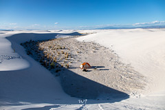 Dune Life (W9JIM) Tags: w9jim camp camping tentcamping whitesands whitesandsnationalmonument orange campinggear gypsum caso₄·2h₂o chihuahuandesert copperspurul1 bigagnes 5d4 24105l 24mm ef24105mmf4lisusm canoneos5dmarkiv explore wow
