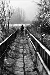 durchatmen (jo.sa.) Tags: landschaft lebensraum analog analogefotografie schwarzweiss bw wasser weg person fahrrad am inn wasserburg