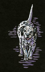 Dalmation-Postcards for the Lunch Bag (Life Imitates Doodles) Tags: dalmation dog blackpaper postcardsforthelunchbag
