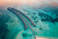 Aerial Maldives (icemanphotos) Tags: maldives drone aerial above sea paradise sunset sunny romantic tourist vacation exotic rest summer destination house sun peaceful bungalow nature luxury travel landscape villa beach relax lagoon tropical wooden concept sunrise bay cottage resort sky reef bora beautiful sunshine dusk hut atoll natural island background idyllic ocean heaven night relaxation tranquil water perfect