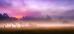 Recesende (Noel F.) Tags: cacheiras recesende teo bretema neboa fog mist abrente mencer sunrise fuscallo galiza galicia sony a7iii a7 iii fe 24 14 gm