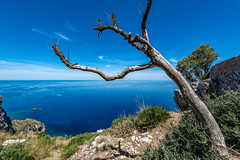 Mallorca - Tramuntana Gebirge - 0727 (Peter Goll thx for +12.000.000 views) Tags: 2019 mallorca spanien tramuntana urlaub estellencs balearischeinseln balearen majorca baleares mediterrean sea lanschaft landscape seascape blue blausky himmel nikonr nikkor 1424mm mittelmeer