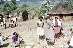 78-476 (ndpa / s. lundeen, archivist) Tags: nick dewolf color photograph photographbynickdewolf 1976 1970s film 35mm 78 reel78 africa northernafrica northeastafrica african ethiopia southernethiopia ethiopian people localpeople village villagers villagelife unidentified men women buildings building house home houses homes huts thatchroof thatchedroof wood landscape terrain trees localwomen youngwomen woman youngwoman seated sitting localmen barefoot barefeet headcovering