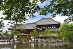 奈良・東大寺 ∣ Todaiji Temple・Nara city (Iyhon Chiu) Tags: 日本 奈良 nara japan japanese 大仏殿 東大寺 奈良公園 pond buddhist todaiji temple