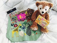 171/365/8 (f l a m i n g o) Tags: gift bear bag canvas present mail friend flickr stickers note june 12th 2019 13th thursday morning photo project365 365days