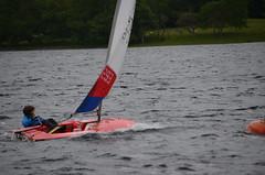 BUR_5894 (Coniston Sailing Club) Tags: coniston conistonsailingclub csc cumbria conistonwater wednesday