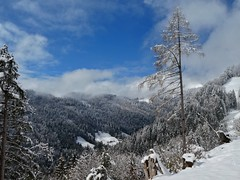 April snow (sander_sloots) Tags: snow sneeuw kanton sankt gallen switzerland zwitserland mountains bergen alpen alps dctz90 lumix panasonic trees bomen landschap landscape tree boom clouds wolken swiss canton forest bos schweiz suisse