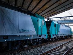 LINΞΛS 2829 & 2832 met staaltrein @ Kiewit (Avinash Chotkan) Tags: lineas hle28 bombardier traxx cargo trains belgium traction tunnel cobra