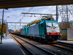 LINΞΛS 2829 & 2832 met staaltrein @ Kiewit (Avinash Chotkan) Tags: lineas hle28 cobra traxx bombardier belgium trains cargo tunnel reflection traction xpedys