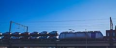 LINΞΛS 186 xxx (Railpool) met autotrein @ Hasselt (Avinash Chotkan) Tags: lineas railpool br186 traxx bombardier cargo trains belgium cars sideshot sky