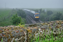 Slippery When Wet (whosoever2) Tags: uk united kingdom gb great britain scotland nikon d7100 train railway railroad june 2019 mist fog scotrail class170 montrose north sea angus wall fungus 1t34 aberdeen glasgow