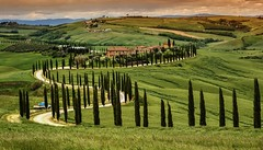 Baccoleno (giannipiras555) Tags: toscana paesaggio panorama landscape tramonto sunset green verde alberi viale colline natura