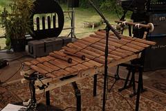 Vula Viel at Mystic (1 van 8) (Maarten Kerkhof) Tags: fujifilmxe2 gyil internationalmusicmeeting liveonstage musicmeeting musicmeetingnijmegen mystic vulaviel xe2