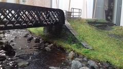 Layout Progress (-caz-jones-) Tags: modelrailway oogauge exhibition layout angleseycentralrailway