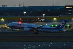 ANA All Nippon Airways JA828A Boeing 787-8 Dreamliner cn/42248-140 @ EBBR / BRU 17-08-2018 (Nabil Molinari Photography) Tags: ana all nippon airways ja828a boeing 7878 dreamliner cn42248140 ebbr bru 17082018