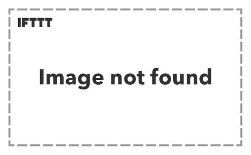 One Direction fan photo