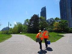Heading home at the end of a shift. (Trinimusic2008 -blessings) Tags: trinimusic2008 judymeikle nature toronto to ontario canada wethenorth nbafinals raptors sonydschx80 june 2019 spring promenade waterfrontrecreationaltrail asharepath