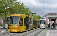 2010-06-02 Magdeburg Tramways Nr.1364 + 1343 (beranekp) Tags: germany deutschland magdeburg tramway tramvaj tram tranvia strassenbahn šalina 1343 1364
