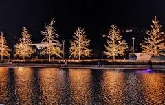Stavros Niarchos Foundation (Matthaios St.) Tags: trees reflection greece nightshot night lights christmas
