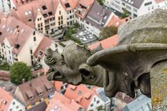 Wasserspeier am Ulmer Münster (wb.fotografie) Tags: ulm ulmermünster kirche kirchturm wasserspeier dächer deutschland badenwürttemberg