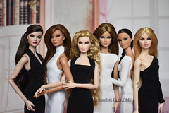 All my Erins (Annabeth R.) Tags: dolls integrity toys fashion royalty fr nuface nu face erin salston without you heiress lady red full speed metamorphosis she owns everiyhing heirloom collection supermodel convention tropicalia little black white dress handmade clothes portrait