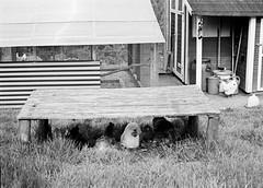 Chicken shelter (25/8) Tags: olympus penf adox cms20ii adotec adoteciv