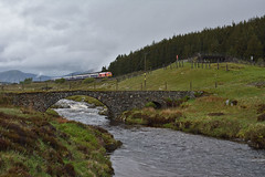 Wet Beds (whosoever2) Tags: uk united kingdom gb great britain scotland nikon d7100 train railway railroad june 2019 dalwhinnie glen truim river wadebridge dbcargo class67 67015 1s25 caledonian highland sleeper london inverness rain dreich