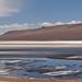 Chile - Altiplano