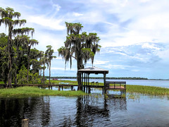 Santa Fe Lake in Florida (` Toshio ') Tags: toshio florida earlton santafelake lake water tree moss dock sky nature usa america iphone