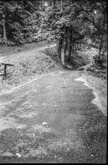 two mountain roads, single lane, converging, Lakey Gap Heights, Black Mountain, NC, Olympus XA, Foma Retropan 320, HC-110 developer, 6.10.19 (steve aimone) Tags: roads roadways mountain singlelane converging lakeygapheights blackmountain northcarolina olympusxa fomaretropan320 hc110developer 35mm 35mmfilm film landscape mountains blueridgemountains southernappalachian monochrome monochromatic blackandwhite