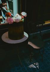Flowers in a stripe of light (titan3025) Tags: leica leicam6 m6 summicron 35mm kodak ultramax 400 zürich 2019