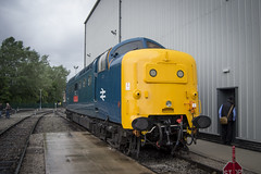 All Change (DM47744) Tags: all change crewe diesel depot open day travel train trains railway railways engine track loco heritage uk cheshire 55019 royal highland fusilier deltic preservation society dps napier english electric br blue
