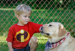 Best Buddies (lablue100) Tags: love child children grandchildrentoddler pets dogs labs lab yellowlab retriever labradorretriever buddies friends
