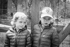 The Twins (lablue100) Tags: twins boys children toddlers brothers grandchildren love blackandwhite nature outdoors