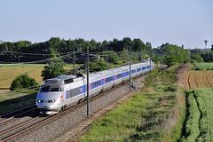 TGV PSE 29 sur la LGV (Alexoum) Tags: sncf tgv sudest lyon rhone sun train railway