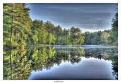 Bauer's Pond, Nashua, NH USA (Pearce Levrais Photography) Tags: outside outdoor nature lake pond water reflection landscape mirror sky cloud tree forest plant shore shoreline sony a7r3 hdr
