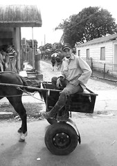 Tiny Cart (peterkelly) Tags: digital bw northamerica cuba cubalibre gadventures canon 6d pinardelrio state man street road horse cart buggy hat