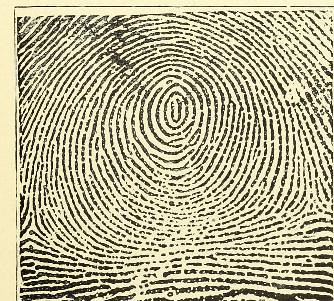 This image is taken from Page 35 of Classification and uses of finger prints [electronic resource]