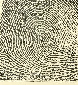 This image is taken from Page 32 of Classification and uses of finger prints [electronic resource]