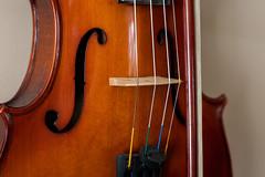 Violin (elizabeth.f.chamberlain) Tags: music instrument instruments musical strings fholes violin bow bridge