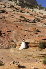 Zion National park Utah: East side with slick rock with bride (swissuki) Tags: zion national nature park usa ut utah largelandscape landscape bride mountain