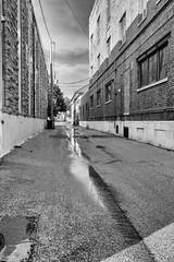 Alleyway after the Storm (LostOne1000) Tags: pentax2470f28edsdm blackandwhite puddle pentaxlenses iowa weather cedarrapids locations road pentax monochrome transportation linncounty equipment camera technicalphotography rain unitedstates pentaxk1 photography downtown unitedstatesofamerica