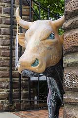 Lurking Bull (GmanViz) Tags: gmanviz color sonya6000 bull sculpture chalk columbusartsfestival columbus ohio culturalartscenter