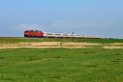 218 344 Keitum (2128n) (christophschneider1) Tags: kbs130 marschbahn keitum sylt nordfriesland schleswigholstein deutschebahn dbfernverkehr ic intercity ic2310 218 218344 tandem doppeltraktion d850