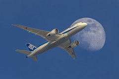 EOSR_015 787-8 ANA Dreamliner  JA816A (yutaka_okamoto) Tags: ana ja816a eosr jet airplane aviation canon eos 7878