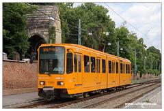 Tram Budapest - 2019-19 (olherfoto) Tags: tram tramcar tramway strasenbahn villamos budapest bkv ungarn hungary