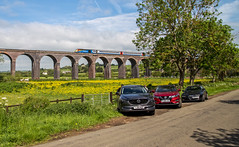 Lined up (Peter Leigh50) Tags: road car photographer people buttercup hst high speed east midland trains train trees track railway railroad rail rural yellow harringworth welland valley viaduct bridge countryside
