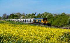 Ashwell (Peter Leigh50) Tags: gbrf oil seed rape ashwell signal box semaphore train trees track railway railroad rail rural yellow countryside fujifilm fuji xt2
