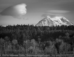 Top of the Mountain (TW Olympia) Tags: mt rainier nisqually national wildlife refuge black white